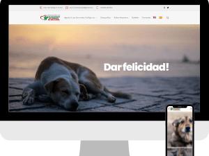 animalse-website-getseo